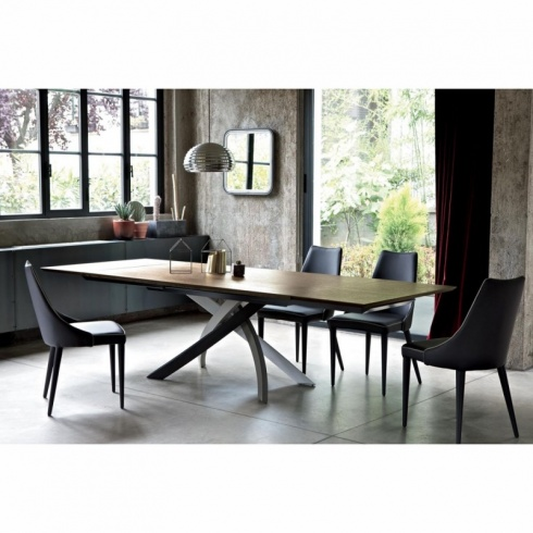 Penelope Modern Dining Chair