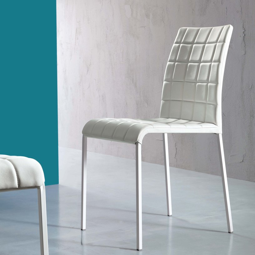 Magnificent Modern Dining Chairs 815 x 815 · 80 kB · jpeg